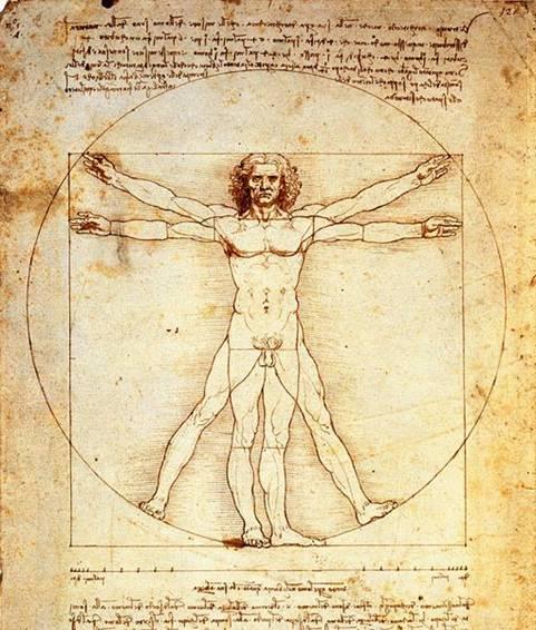 Desenho do Homem Vitruviano, de Leonardo Da Vinci